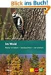 Im Wald: Natur erleben - beobachten -...