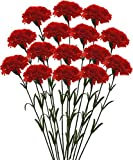 #10: Fourwalls Single Carnation (Set of 15, Red)