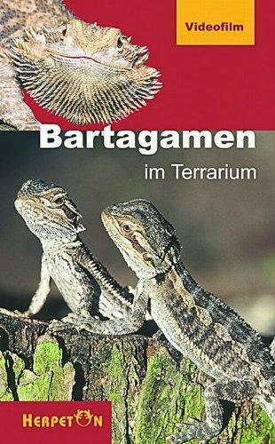 DVD, Bartagamen im Terrarium