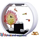 Fish R Fun Deco Fish Tank, 10 Litre, White