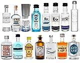 Gin Mini Set Probierset 15er - Saffron + Bombay + Edinburgh + Gin Mare + Gordons + Monkey 47 + Organic + Siegfried + The Botanist + Duke + London No1 + Luv & Lee + Skiclub Kampen