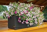 17 L Pflanzkübel Blumentopf L 500 mm Blumenbank in Rattan-Optik Bewässerungssystem Rato Serie braun viereckig
