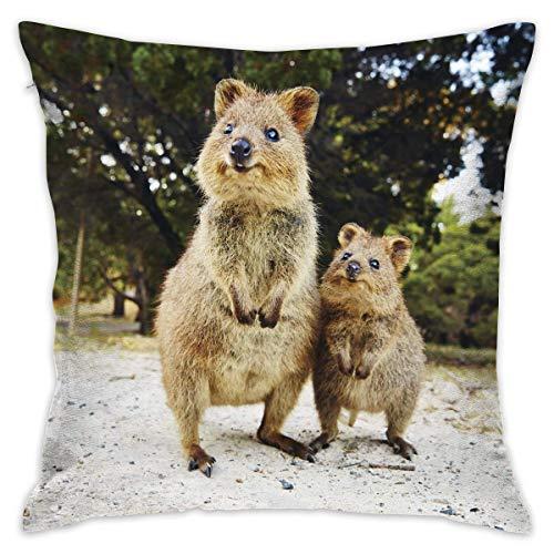 LongTrade 4 Größen Kissenbezug Quokka Selfie Decorative Throw Pillow Covers Euro Sham Cushion Sham Square Cushion Case Pillowcases for Living Room Sofa Bedroom Car -
