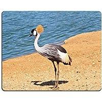 Luxlady Gaming Mousepad immagine ID: 38199045Park Safari in Tel Aviv Elegante e grazioso uccello con magnifico con stemma su la testa vive near organi di acqua