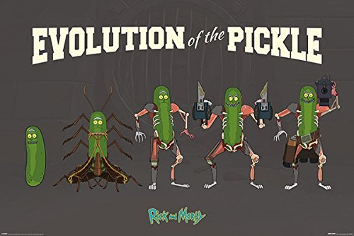 Close Up Póster Rick and Morty - Evolution of The Pickle (91,5cm x 61cm) + 2 Marcos Negros para póster con suspención