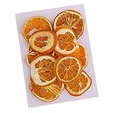 Baoblaze 10 Stück Orangenscheiben Fruchtscheiben getrocknet Trockenfrüchte Orange Deko