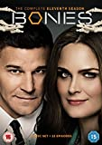 Picture Of Bones: The Complete Eleventh Season [DVD]