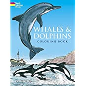 Whales and Dolphins Coloring Book (Dover Nature Coloring Book) by John Green (1990) Paperback