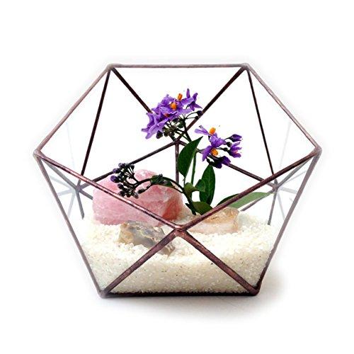 ikosaeder-gross-geometrisches-glas-terrarium-handgemachtes-pflanzglas-modernes-pflanzgefass-fur-den-