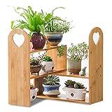 Jiu Xiu Blumenständer - multifunktionaler Massivholz-Blumenständer, rostfreier dekorativer Mini-Topfkorb, Büro, Fensterbank @-@-@