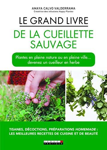 Le grand livre de la cueillette sauvage par Amaya Calvo Valderrama