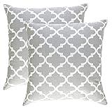 TreeWool Dekorativer Kissenbezug (40 x 40 cm, Silber Grau) Trellis Design 100% Baumwolle (2er Pack)