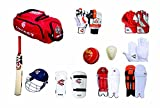 Cw Sports Team Cricket Kit Combo Red For Men'S Senior Cricket Kit With Kashmir Willow Hi- Tech Cricket Bat Complete Batting & Keeping Accessories  Cricket Kit 51i3z1SptxL