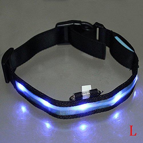 Dcolor LED-Blitzlicht einstellbare Sicherheits Haustier Hund leichtes Nylon-Halsband Plain Tag - Blau L