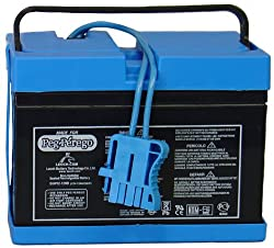Peg Perego Battery 12 Volt (Drop Ship Pack)
