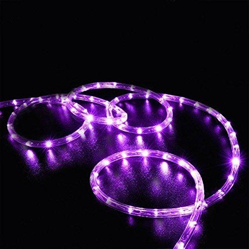 100LEDs Schlauch Lichterkette,KINGCOO IP55 Wasserdicht 39ft/12m Solarlichterkette Röhrenlicht Seil Kupferdraht Weihnachtsbeleuchtung Lichter für Hochzeit Garden Party Außenlichterkette(Lila)
