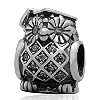 Soulbead Graduate Owl Charm 925 Sterling Silver Bead with Clear Zircon Stone for European Brand Bracelet Compatible