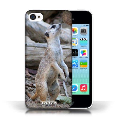 Kobalt Lupo stampato Custodia Cover per Apple iPhone 5C cellulari telefoni / Collezione Animali selvatici Meerkat