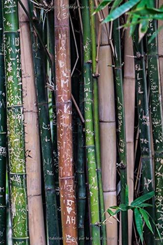 Carnet de Notes: Petit journal personnel de 121 pages blanches avec couverture « Bambous - Graffitis