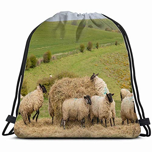 Sheep Feeding On Hay South Downs Animals Wildlife Nature Drawstring Backpack Bag Sackpack Gym Sack Sport Beach Daypack for Girls Men & Women Teen Dance Bag Cycling Hiking Team Training