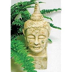 My Home de cabeza de Buda