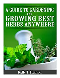 A Guide to Gardening and Growing Best Herbs Anywhere