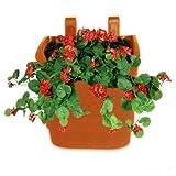 #3: Vertical Garden Wall Hanging Pot (Terracotta, 10 Qty) - Srisai Naturals