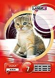 LANDRE 100050073 Schulheft 10er Pack A5 16 Blatt Lineatur 7 - kariert 3 Motive sortiert