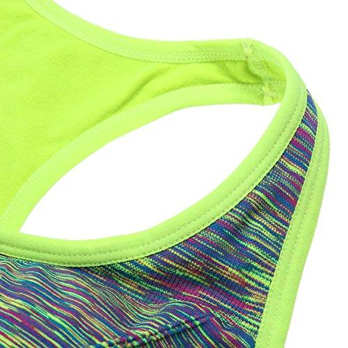 La Cabina Sexy Brassière Sport Femme Antichoc -Soutien Gorge Sport Push Up-Soutien Gorge Sans Armature-Sous-vêtements de Sport Femme - pour Sport et Yoga Vert