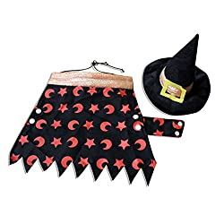 17YEARS Dog Puppy Halloween Wizard Cloak with Hat Pet Costume Fancy Dress Party Suit from 17YEARS