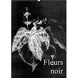 Fleurs noir (Wandkalender 2019 DIN A2 hoch): Fleurs Noir - ist ein künstlerischer Streifzug mit Kreidestift auf koloriertem, leinenstrukturiertem ... (Monatskalender, 14 Seiten ) (CALVENDO Kunst)