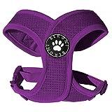 Hundegeschirr Brustgeschirr soft lila weich gepolstert verstellbar für kleine Hunde bis Mops beere Mesh (S: ( Brustumfang 31 - 41cm ))