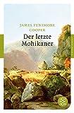 Der letzte Mohikaner: Roman (Fischer Klassik, Band 90101)
