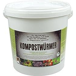 KOMPOSTWÜRMER - 1000 Stück/Eimer - Kompost-Starter Regenwürmer - Eisenia Kompostwurm lebend aktiv - Würmer für Garten & Kompostierung Kompost Komposter Wurmkomposter Wurmkiste Wurmfarm Komposttoilette