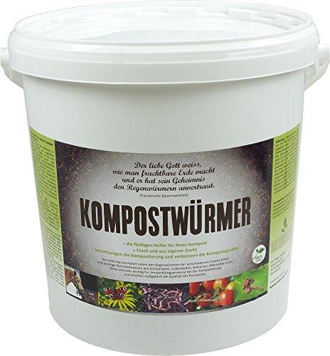 KOMPOSTWÜRMER - 1000 Stück/Eimer - Kompost-Starter Regenwürmer - Eisenia Kompostwurm lebend aktiv - Würmer für Garten & Kompostierung Kompost...