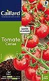 Caillard PFCC15933 Graines de Tomate Cerise