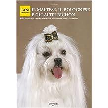 Amazonit Cane Maltese Libri