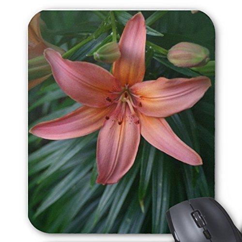 orange-lily-flower-in-bloom-mousepads-stilvoll-haltbar-mousepad-design-mit-blumen-maus-pad-schutzt-d
