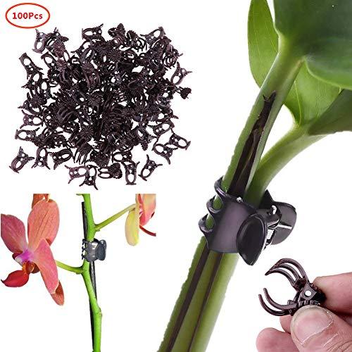 EMVANV 100 Stück Pflanzenstützen Clips für Orchideen Stängel für Orchideen, Gewächshaus,...