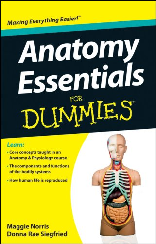 Anatomy Essentials For Dummies por Maggie A. Norris