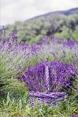 A Fragrant Bunch of Lavender in a Purple Basket in the Flower Garden Journal: 150 Page Lined Notebook/Diary