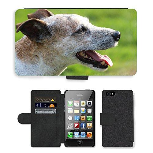 PU Flip Carcasa Funda de Cuero Piel Cubre Case // M00133651 Cane Capo Close Parson Russell Terrier // Apple iPhone 4 4S 4G