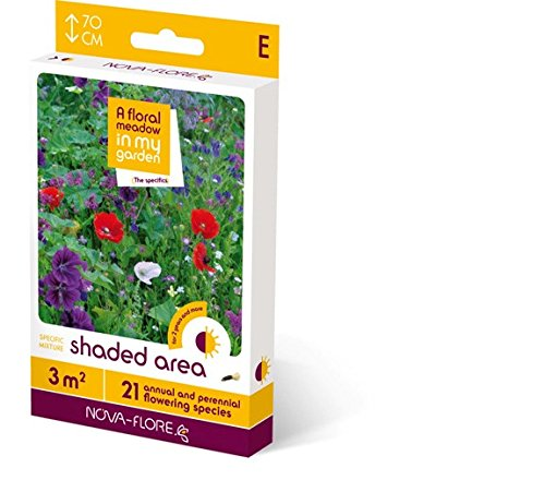 Buy Meadow In My Garden products online in Oman - Muscat