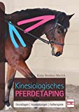 Kinesiologisches Pferdetaping: Grundlagen, Anwendungen, Fallbeispiele