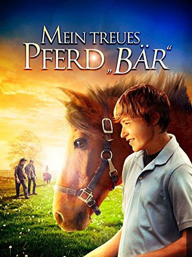 Mein treues Pferd