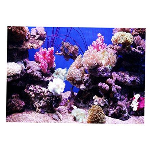 non-brand MagiDeal Aquarium Poster Fisch Tank Hintergrund - Korallen L