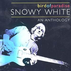 Bird of Paradise: An Anthology