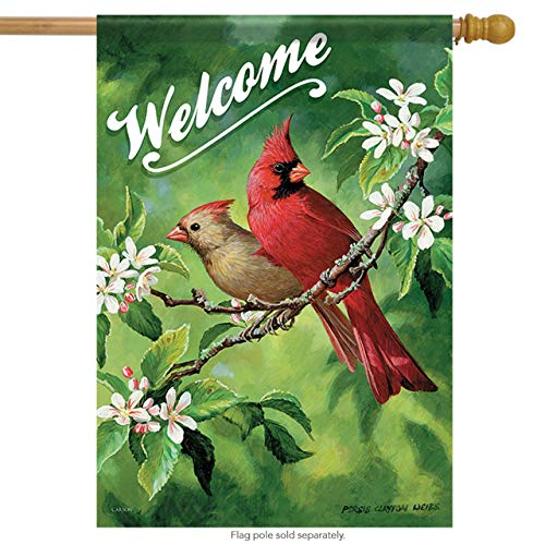 ASKYE Lady & Red Cardinals Welcome Spring House Flag 2 Sided Birds Floral for Party Outdoor Home Decor(Size: 12.5inch W X 18 inch H) -
