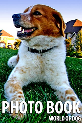 photo-book-world-of-dog-vol6-photo-book-dog-dog-photography-english-edition