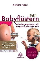 Babyflüstern Teil 1: Seelenbegegnungen mit Kindern der neuen Zeit - Kinderwunsch, Schwangerschaft und Geburt